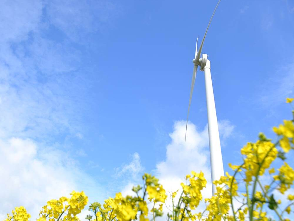 Windpower Introduction