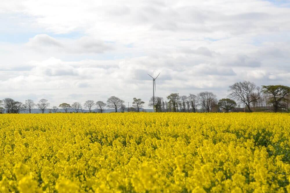 Renewables First - Blacktoft Nursery wind turbine commissioning