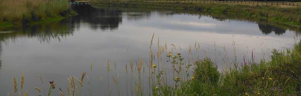 Pershore hydro scheme enhancing biodiversity